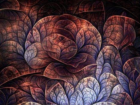 Edimburgh Flower (revamped)