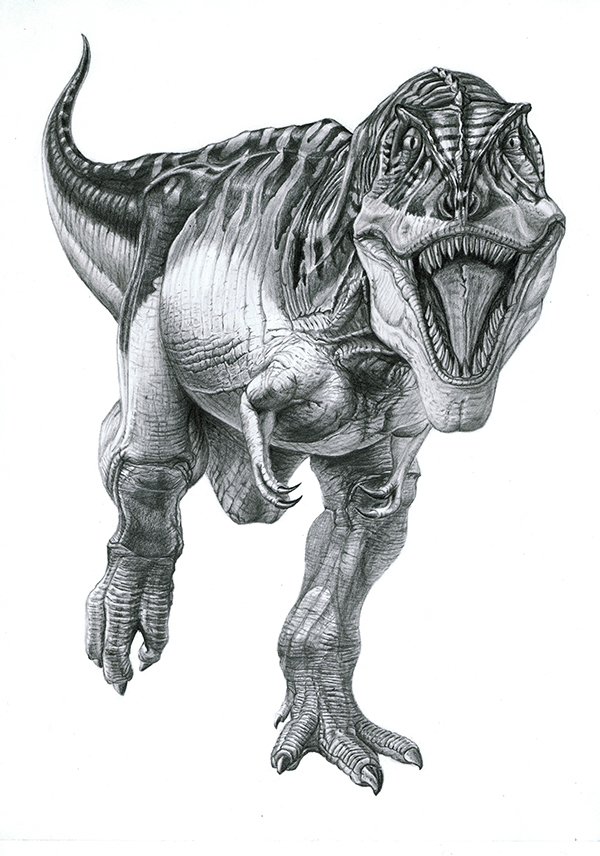Tyrannosaurus by PunkyMeadows