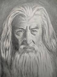 Gandalf by mrPaulDure