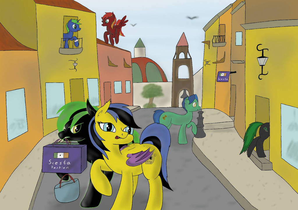 Shopping tour by SWSM-Pegasus