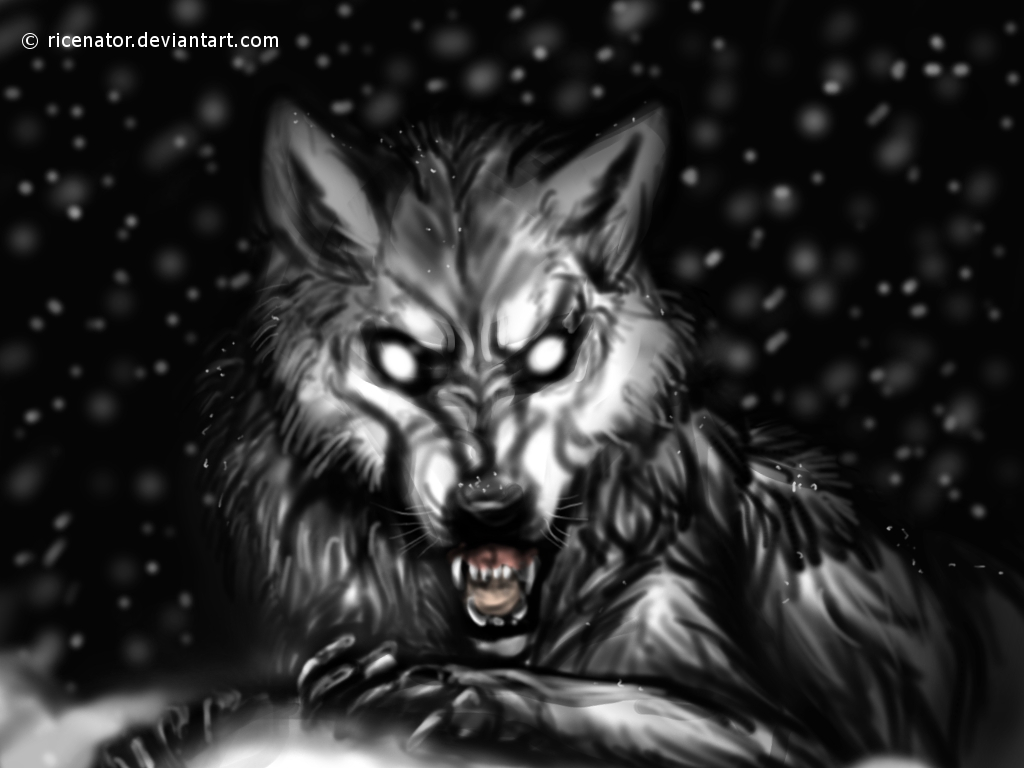 Wolf Growling Drawing Front Growling Dog Drawing