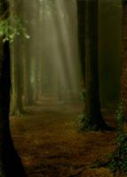 Fantasy Forest Scene by JulieLangford