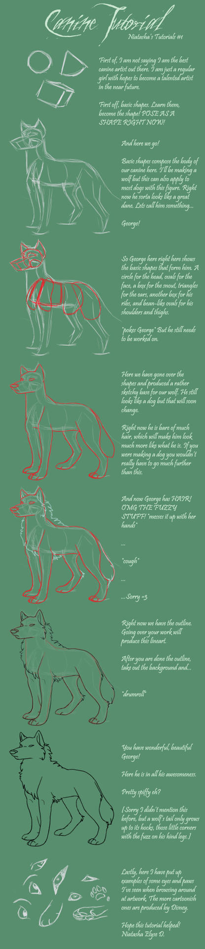 NT-1 Canine Tutorial by Lenval