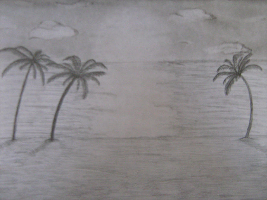 How to Draw a Realistic Beach Sunset Pencil Drawing by Kelli Swan How to Draw a Realistic Palm Tree
