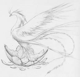 Phoenix by Aerythes
