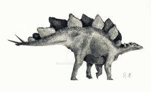 Stegosaurus stenops (outdated)