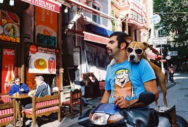 Biker Dog by tanya-n