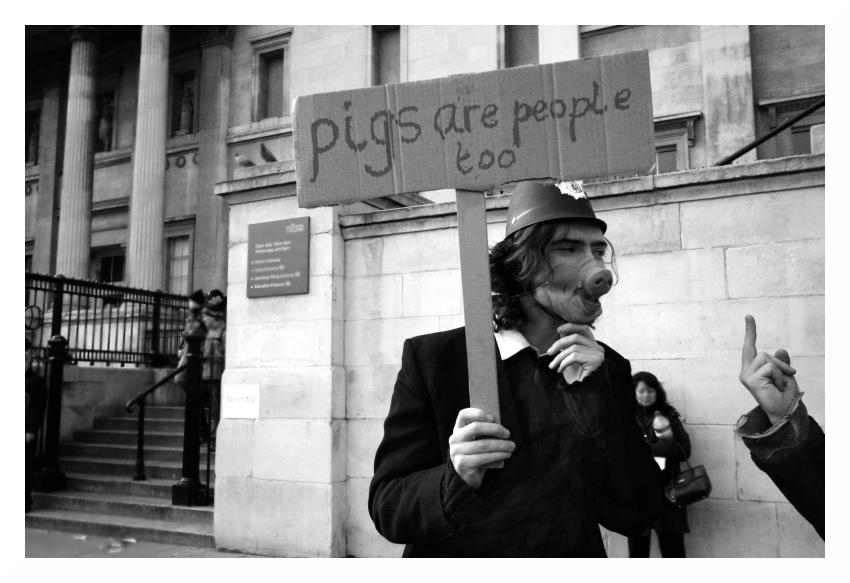 Pigs Are People Too by tanya-n