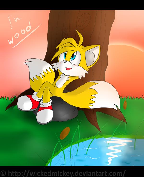 tails_in_wood_by_wickedmickey-d4ldfev.pn