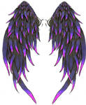 coloured wings for steph