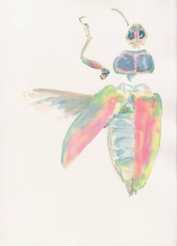 Beetle WIP