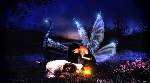 Fairies love