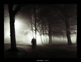 night dreamer by bmuda