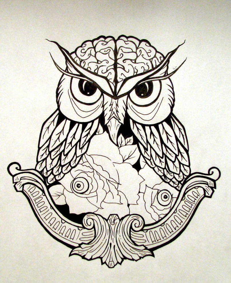 Owl by katomzzz on deviantart for Cool drawings of owls