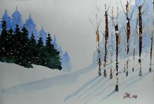 A snow dream