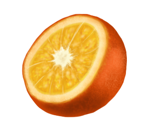 Orange by 102vvv
