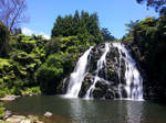 Owharoa Falls Karangahake Gorge New Zealand
