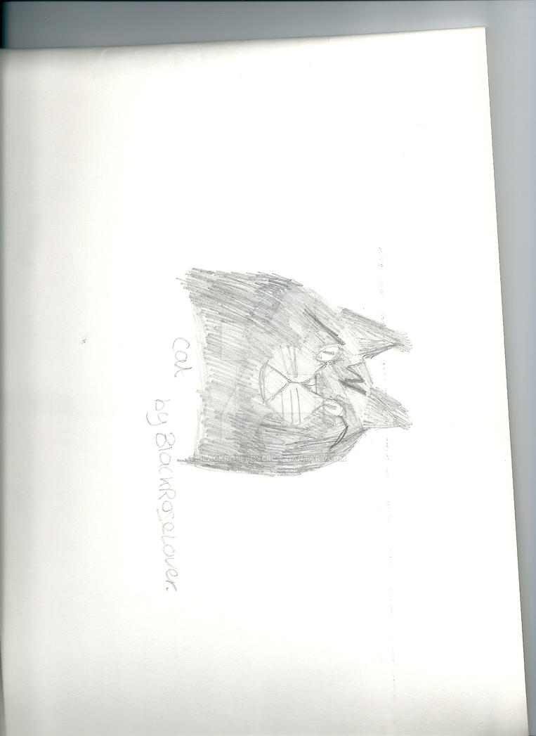 Cat Drawing by blackroselover