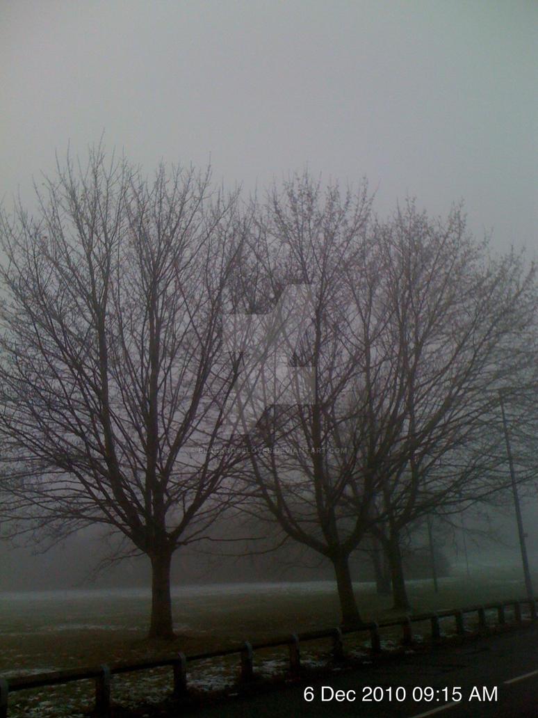 fog by blackroselover