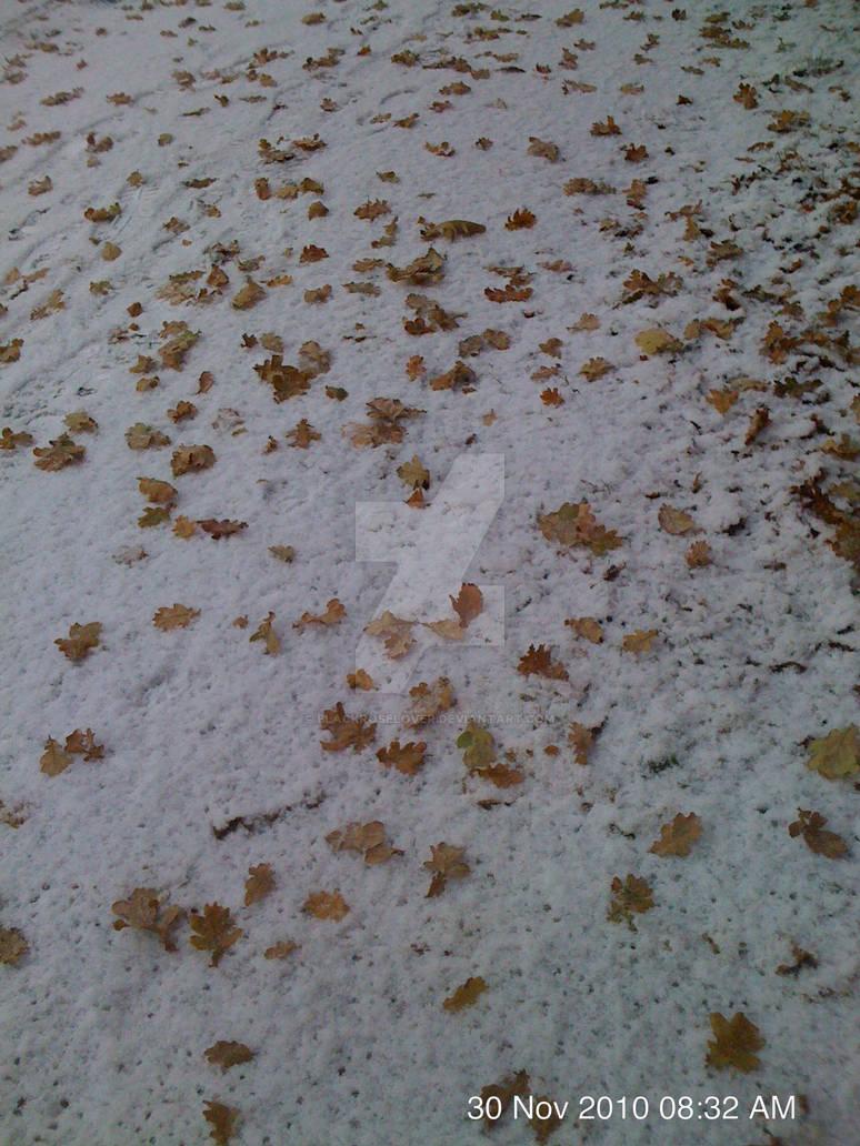 Leaf snow by blackroselover