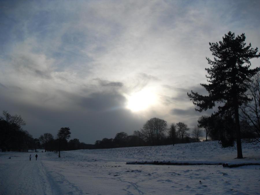 sky sun and snow by blackroselover