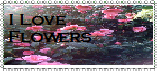 I Love flowers stamp by blackroselover