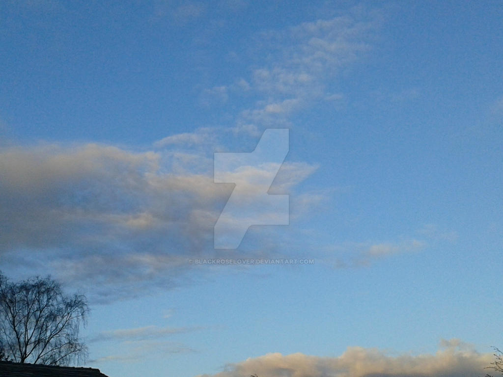 Sky 1 by blackroselover