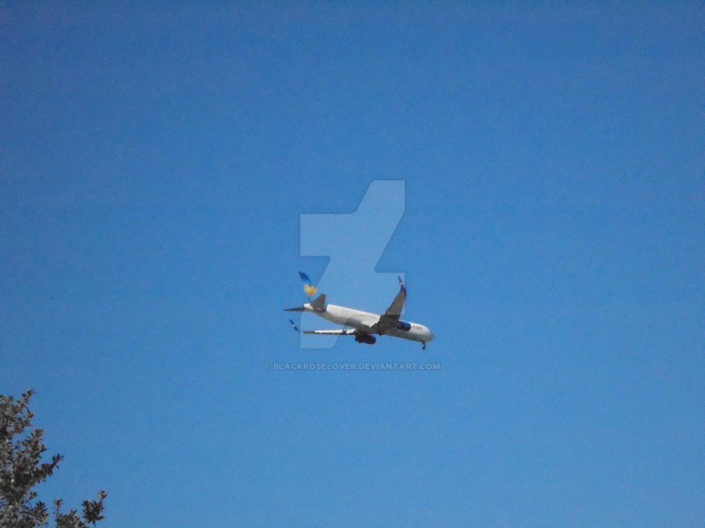 Plane coming into land by blackroselover