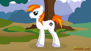 Wander Fox Pony Sony Update 2