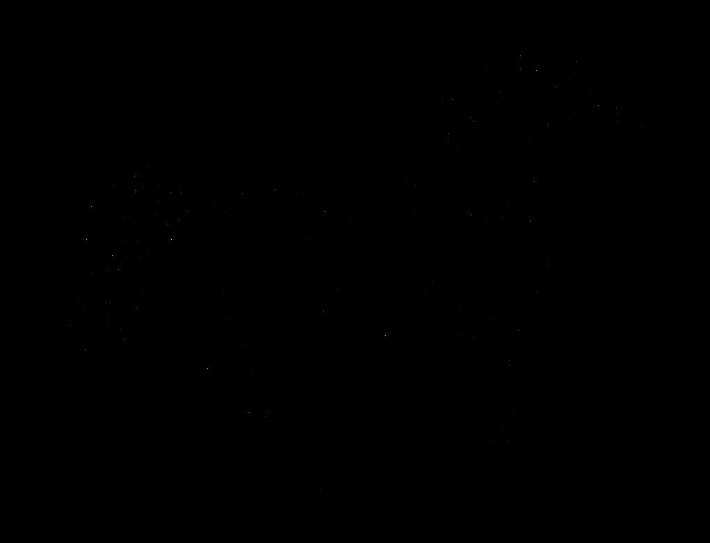 Line Art Transparent Background : Free horse lineart by schn e on deviantart
