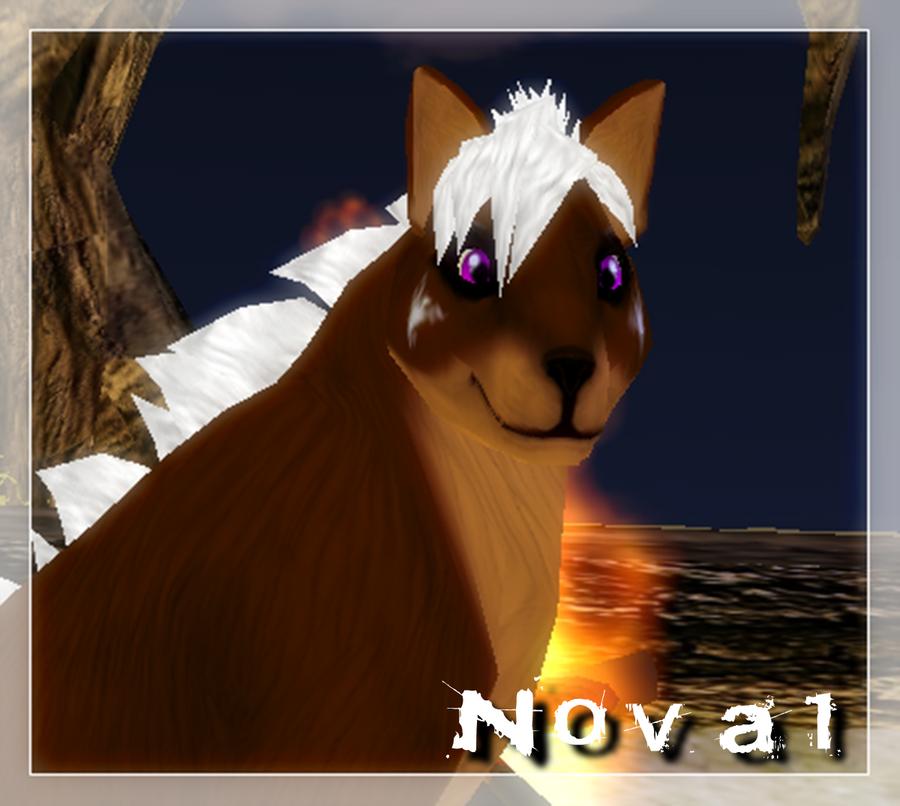 Wolf-fairi's Profile Picture