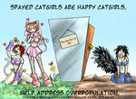 Proper care of catgirls...