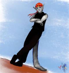 AER crowd character: Ninjaroo