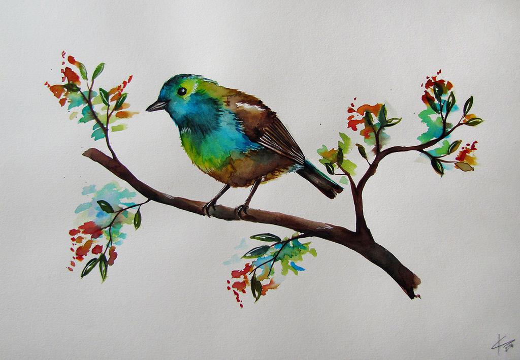 bird by Acrisa