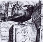 Ravens Of Black Mountain