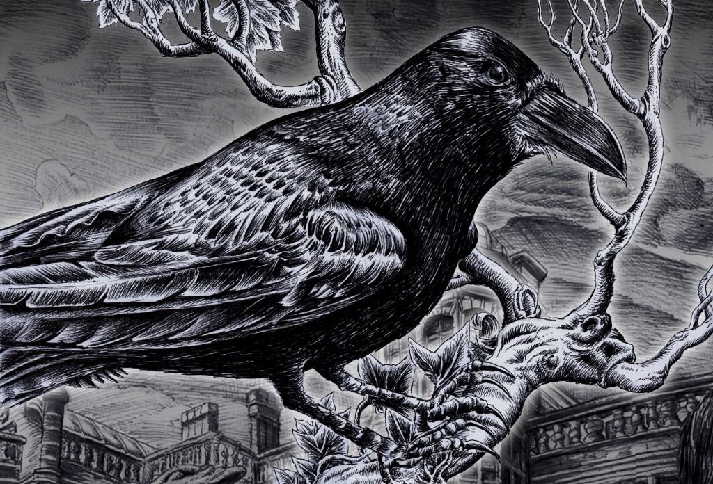 Raven by Black--Mountain