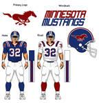 Minnesota Mustangs, fantasy football team.