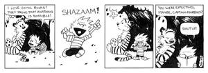 Calvin and Hobbes Assignment
