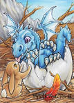 Spellcasters2 Dragon Hatchling