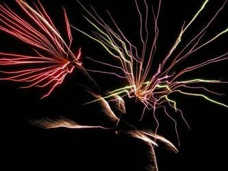 Fireworks VII
