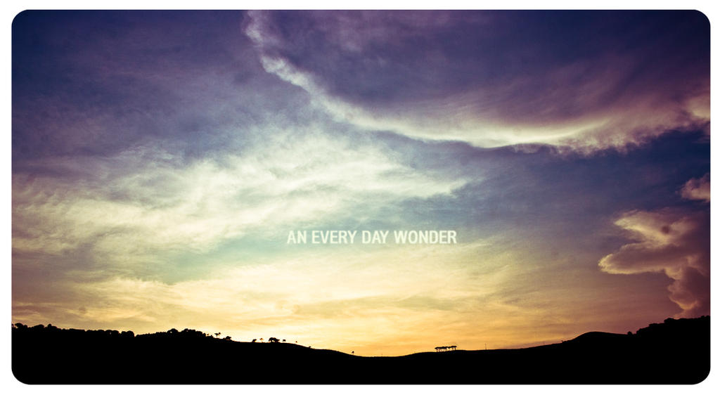 Every day wonders.