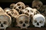 Killing Fields Skulls