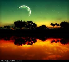 The Magic Night by pedrosampaio