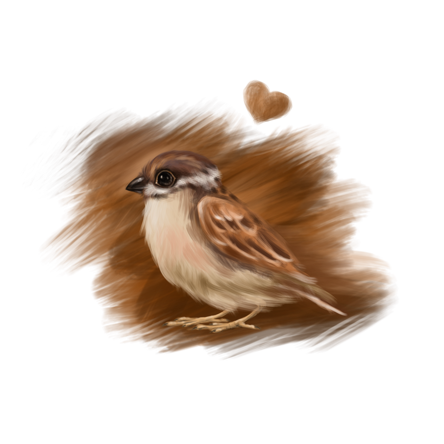 Sparrow Love by Nyotah