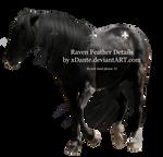 Raven Feather Details