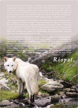 Riopat HTML