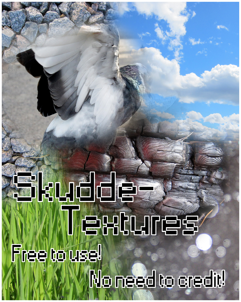 Skudde-Textures's Profile Picture
