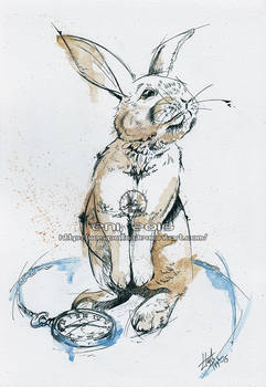 Bunny and a watch