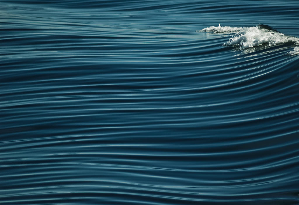 Lines of a wave by somebody3121