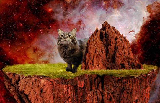 Onyx on a rock